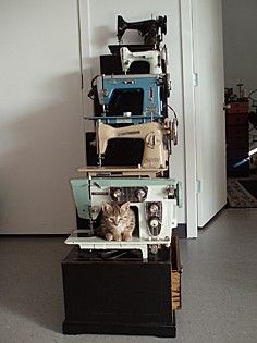 collection of machines (and a kitty!)