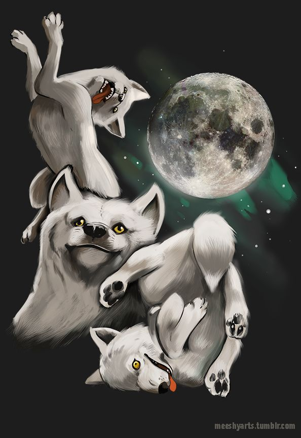 """meeshyarts: """" 3 Moon Moon….the most noble of shirts —- Unisex: http://www.lookhuman.com/design/14885-three-wolf-moon-moon Juniors:http://www.lookhuman.com/design/14886-three-wolf-moon-moon-juniors """""""