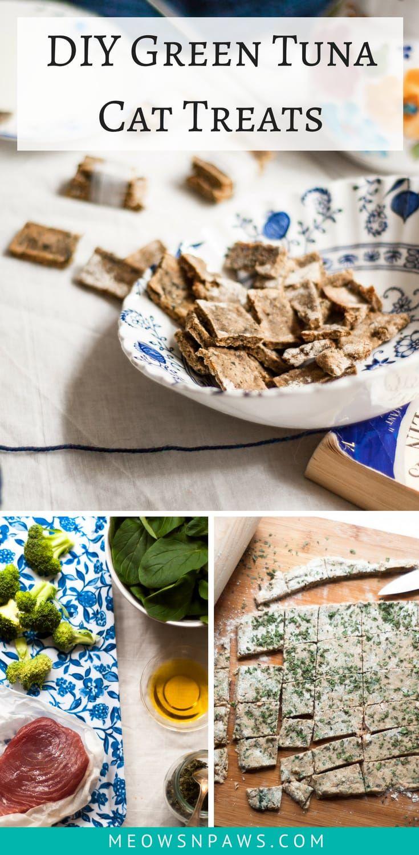 Green Tuna Cat Cookies Recipe Pet treats, Cats, Cat treats