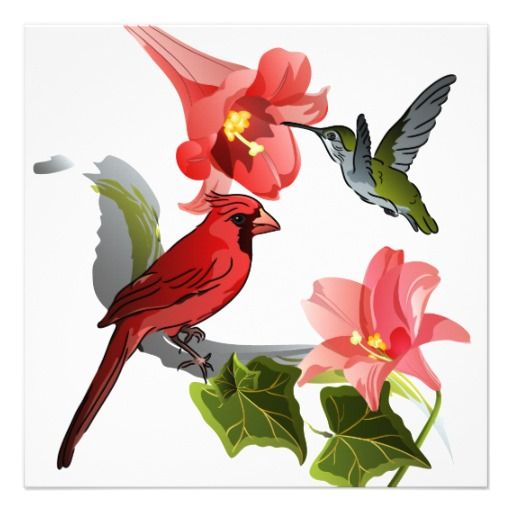 Cardinal and Hummingbird with Lilies and Ivy Card ...