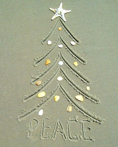 Love the Beach? Take your own Christmas card pictures this year, right on the beach. 24 Crazy cute ideas: http://beachblissliving.com/beach-christmas-card-photo-ideas/ Fun family Christmas photos, colorful ornament shots, and many more.: