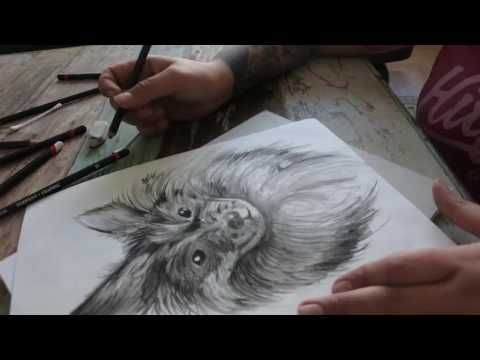 Speed paint / Timelapse painting, in memory of Alfons, R.I.P. my little ...