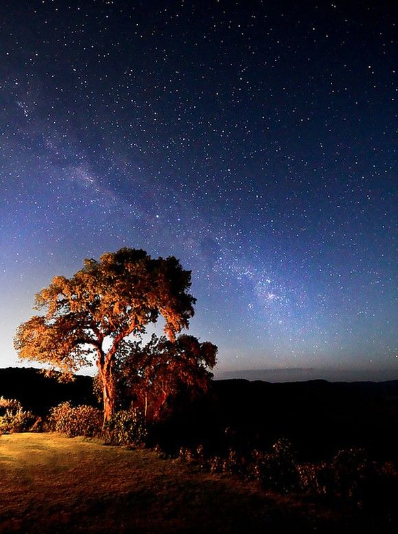 Milky Way from Tanzania