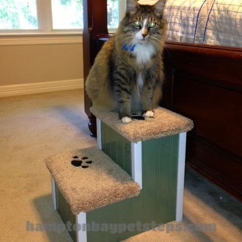 Give your & your pet peace of mind by reaching their favorite resting spot with Hampton Bay Pet Steps. Shipping Always Included! Get your coupon today!