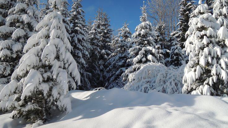 Vysoké Tatry môžu byť v týchto dňoch pre turistov nebezpečné pre zľadovatený sneh http://my.slbeu.eu/vstra833bd #Slovensko #VysokeTatry #Tatry #HZS