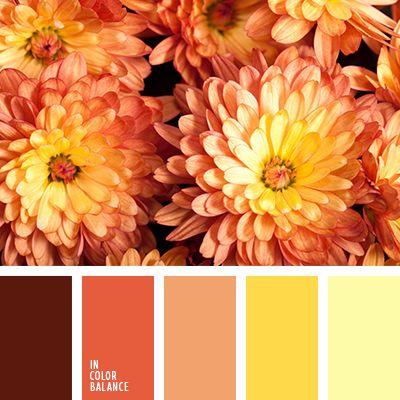бледно-желтый, бордовый, кирпичный, коричневый, оранжевый, оттенки желтого, оттенки оранжевого, оттенки осени, палитра для осени, подбор цвета, подбор цвета для осени, тыквенный цвет, цвет тыквы, шафрановый, яркий желтый.