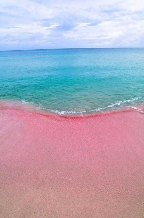 Playa rosa (Bahamas)