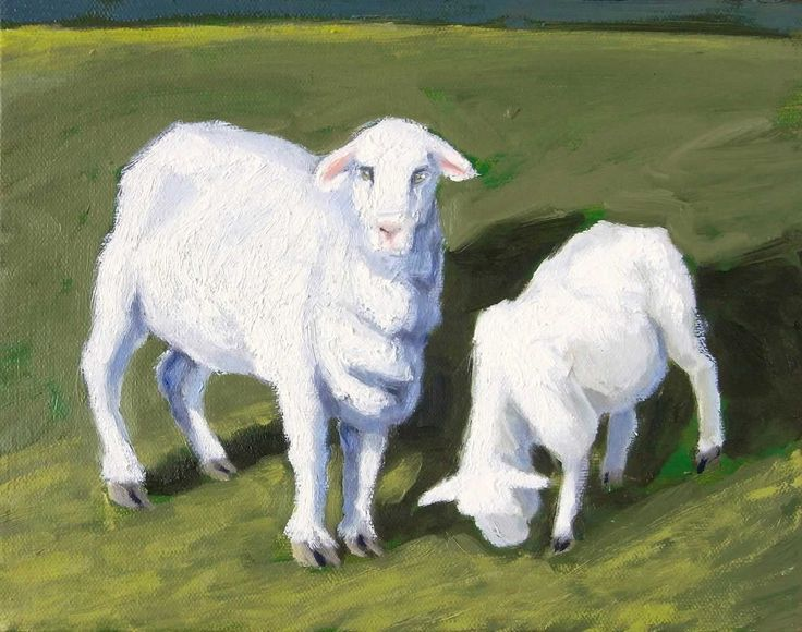 Ewe and lamb by Diana Cameron. 2013. Oil on canvas. 20 x 25.5cm. $370.