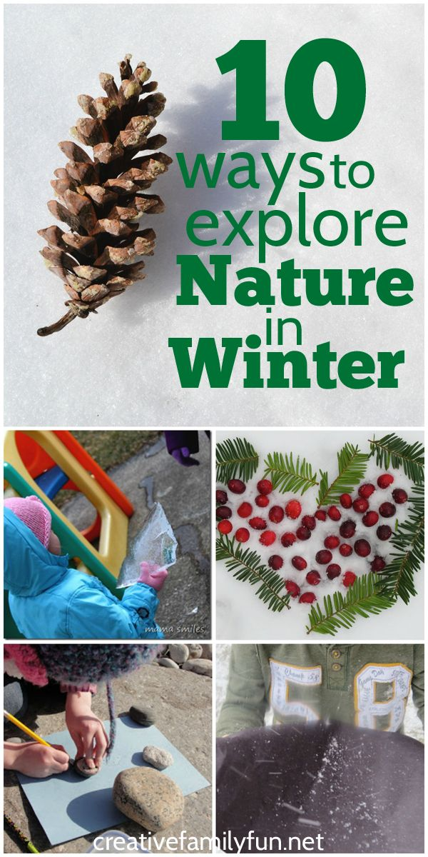 Get outside and explore nature in the winter! Here are 10 fun kids activities to get outside and explore nature in the winter.