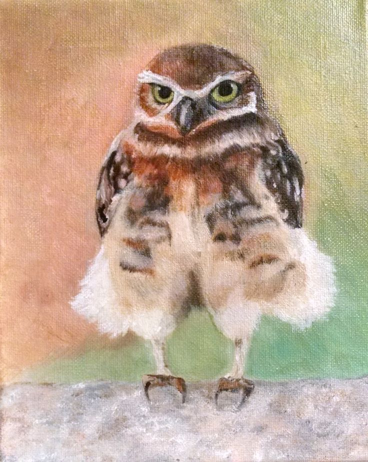 I call this Leder Hosen Owl.  Painted from a photo.  I am unable to give credit to the professional photographer who took this amazing shot as I do not know who it was.  NFS
