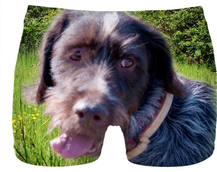 Check out my new product https://www.rageon.com/products/dog-wirehaired-pointing-griffon-men-underwear-1?aff=BWeX on RageOn!