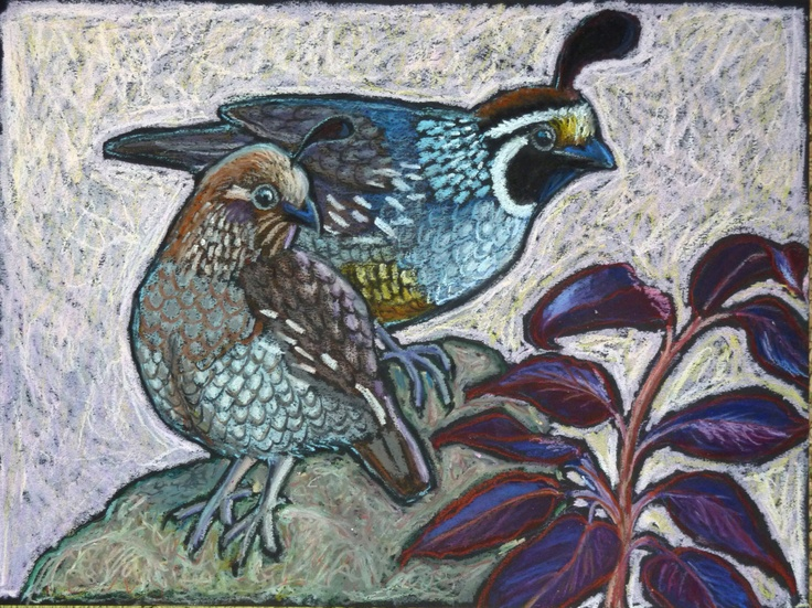 original oil pastel painting of california quail by ande gene hall availabel on etsy
