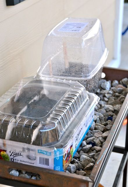 Use plastic containers from salad, grapes, etc for starting seeds. Genius. #BabyCenterBlog