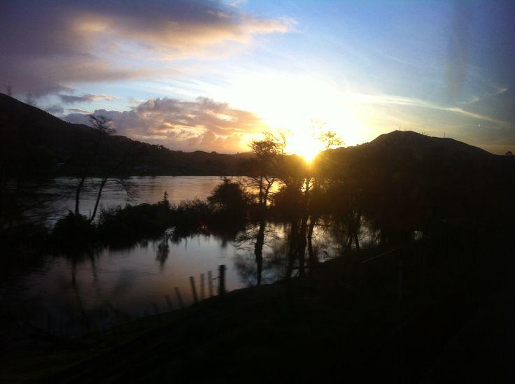 Kiwi-a-gogo land