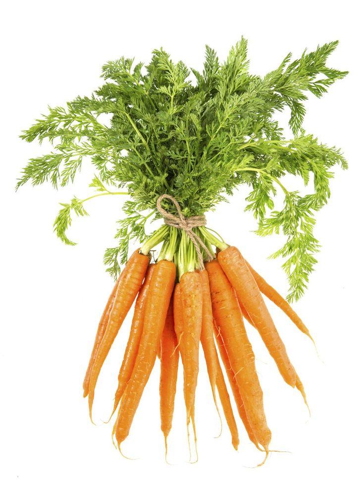Karotten sind bekanntermaßen besonders reich an Carotin, das antioxidativ wirkt und schädliche freie Radikale bekämpft. Was nur wenige wissen: der sekundäre Pflanzenstoff sitzt überwiegend in der Schale. Also die Möhren ab sofort nur noch abbürsten und waschen!