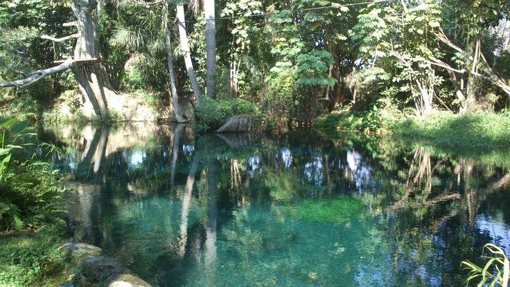 Las Estacas en Tlaltizapán, Morelos