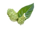 Noni: The original (and still the best) source of iridoids in the world. Thrive Adaptogenics are built around the powerful noni fruit.