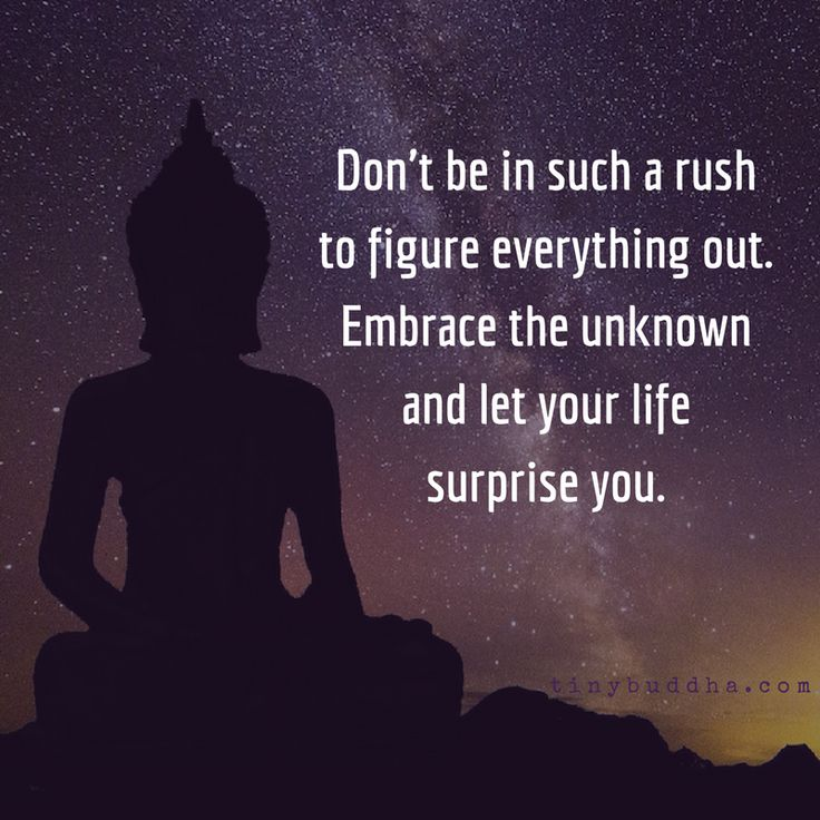 Image result for don't be in such a rush to figure everyone out. embrace the unknown and let your life surprise you tiny buddha