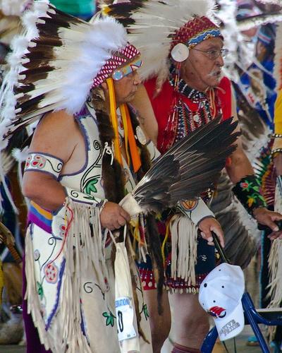 Montana Native Plants: 44 Best Mcclure Images On Pinterest
