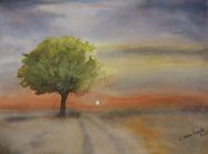 De Eenzame boom, juni 2015
