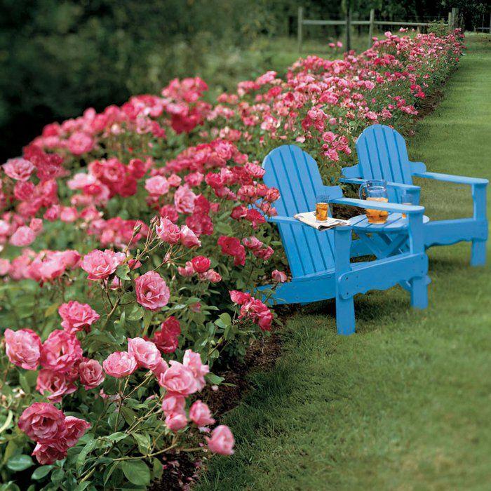 les 25 meilleures id es de la cat gorie arbuste fleurs. Black Bedroom Furniture Sets. Home Design Ideas