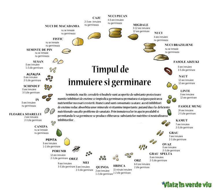 timpul de hidratare si germinare pentru legume si seminte