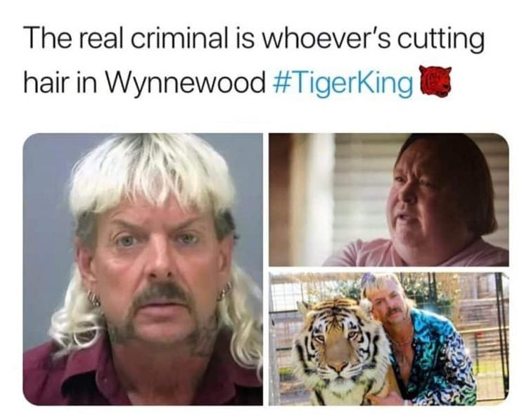 Hey All You Cool Cats And Kittens The Best Tiger King Memes In 2020 King Meme Funny Tiger Funny Pictures