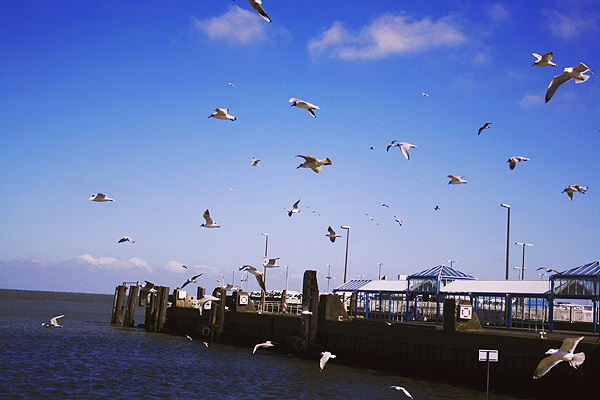 Habor Cuxhaven at the Northsea ....my Dream Place Delux ...i would so love to live there