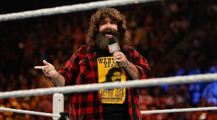Mick Foley Talks About Shane McMahon Taking Bumps off The HIAC