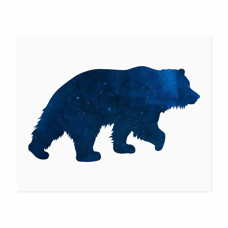 A starry galaxy inside a beautiful bear silhouette. The perfect art print to add a touch of nature and whimsy to any room in your home. Printed with fade resistant archival inks on thick 19pt Savoy Co