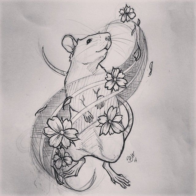 Shop doodle  Anyone like this for a tattoo in South Jersey? #rat #tattoo…