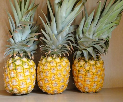 Everything you need to know about pineapple: nutrition, health benefits, how to cut a pineapple and pineapple recipes.