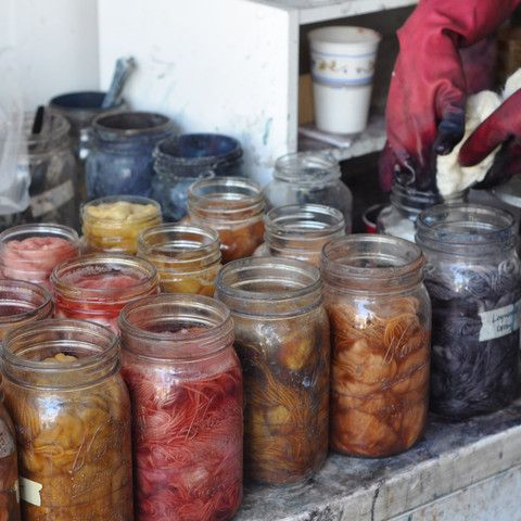 Grow Your Own Dye Plants, Natural Dyeing, and Indigo Dyeing