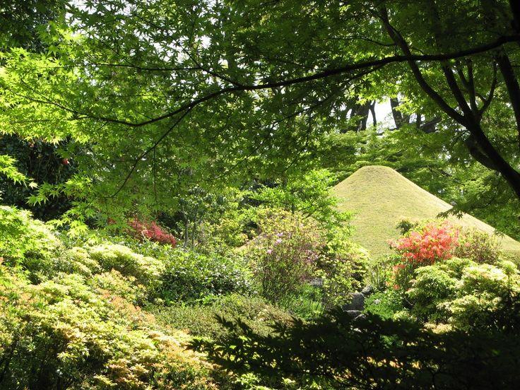 駿府城公園 紅葉山庭園 Momijiyama Garden in Sumpu Park
