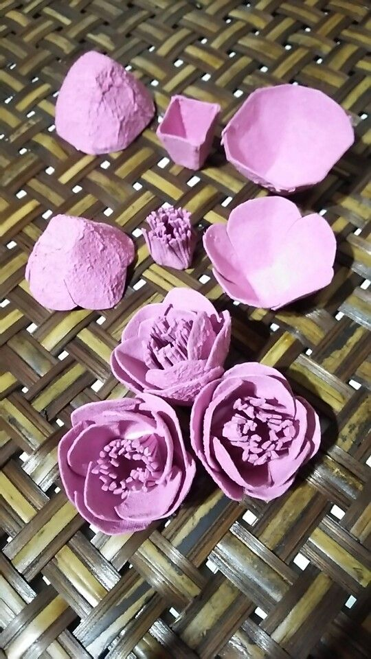 egg carton flowers camellia Japanese name of