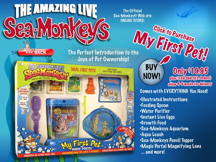 Sea Monkeys!  (okay these might be for me too) ;-)