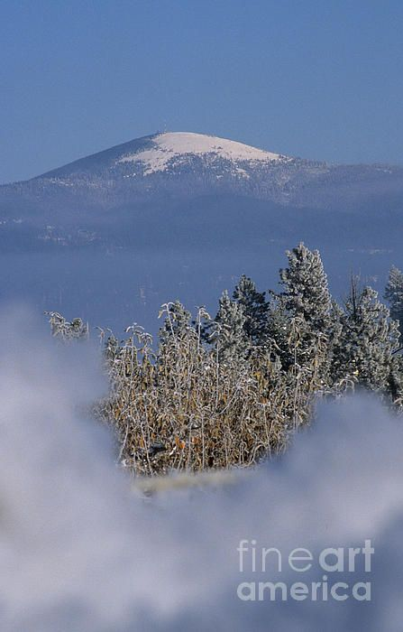Mount Spokane, bright and beautiful in the winter sun. This image taken  from the Green Bluff area just north-east of Spokane Washington.