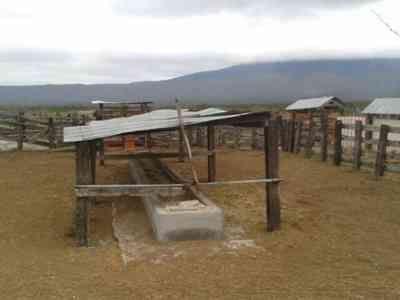 ganaderia del marques de saltillo   vendo 6300 hect agostadero con 200 vacas y 7 pozos agua en Chihuahua ...