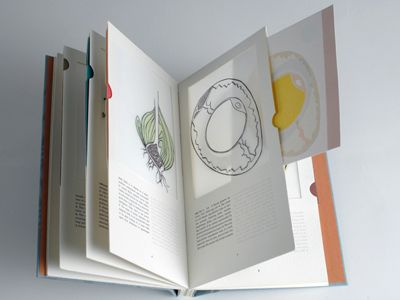Cutaway by Sarah Bryant. 2007. Letterpress printed on mylar, Hahnemuhle Copperplate and Rives BFK from polymer plates. Contained in a handmade slipcase. Printed in an edition of 45.
