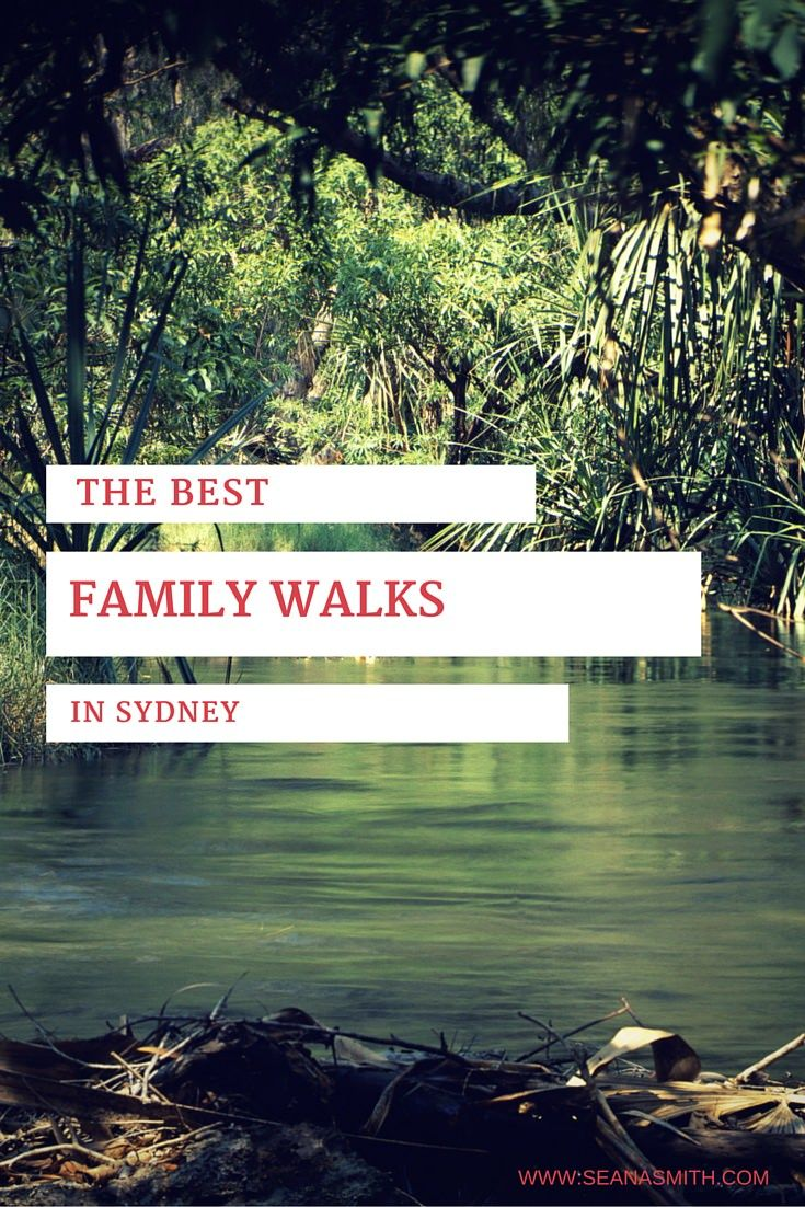 the best family walks in Sydney