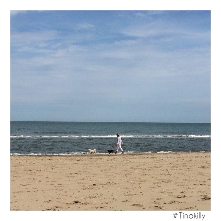 Beach walks at #brittasbay to blow off the cobwebs after last nights Jazz @tinakilly_country_house_hotel #Tinakilly #BeachWalks #GoodMorning