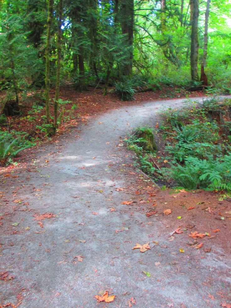 The Green Trail