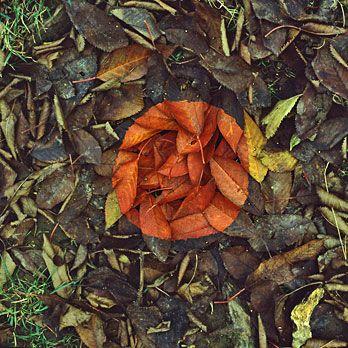 Andy Goldsworthy uses natural materials - no glue no paint