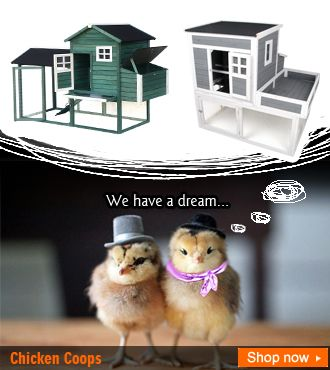 We have a dream...that one day, we'll live in these clean, safe and beautiful homes!  #backyard #poultry #chicken coop http://www.zosomart.com/pet-supplies/chicken-rabbit-cage.html