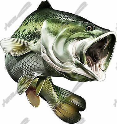 231 best images about bass fishin art. Black Bedroom Furniture Sets. Home Design Ideas