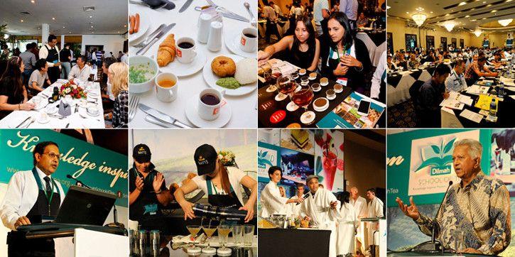 Dilmah School of Tea – Enlightening the world on all things tea! | Dilmah Pressrom