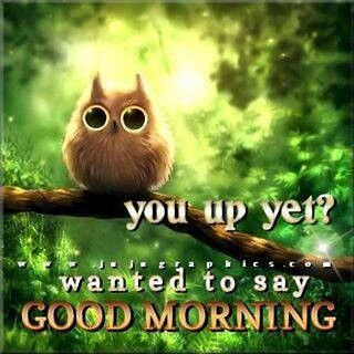 239 best images about Coffee & Morning Greetings on Pinterest   Wake up, The coffee and Monkey