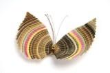 Mariposa de crin de caballo. Cestería Fundación Artesanías de Chile