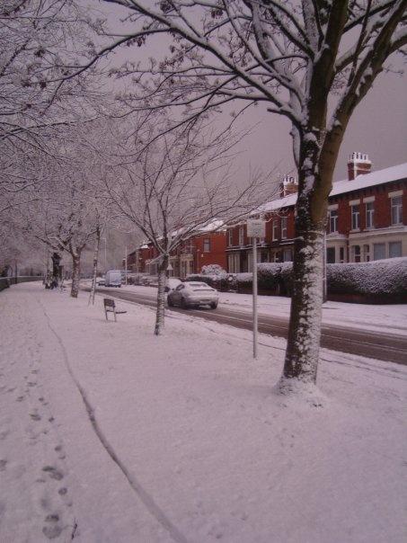 #snow #preston