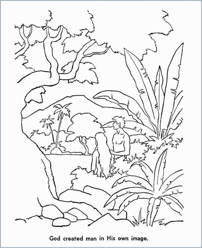 2 God Made Adam Eve Creation Coloring Pages Bible Coloring